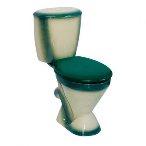 Унитаз-компакт наклонный выпуск, декор зеленый, Элегант, Кировская керамика Rosa